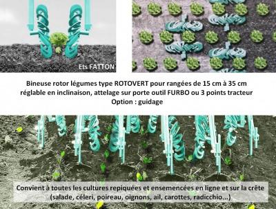 Bineuse rotor légumes ROTOVERT