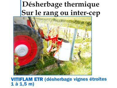 Désherbage thermique sur le rang ou inter-cep